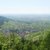 Blick auf Baden-Baden