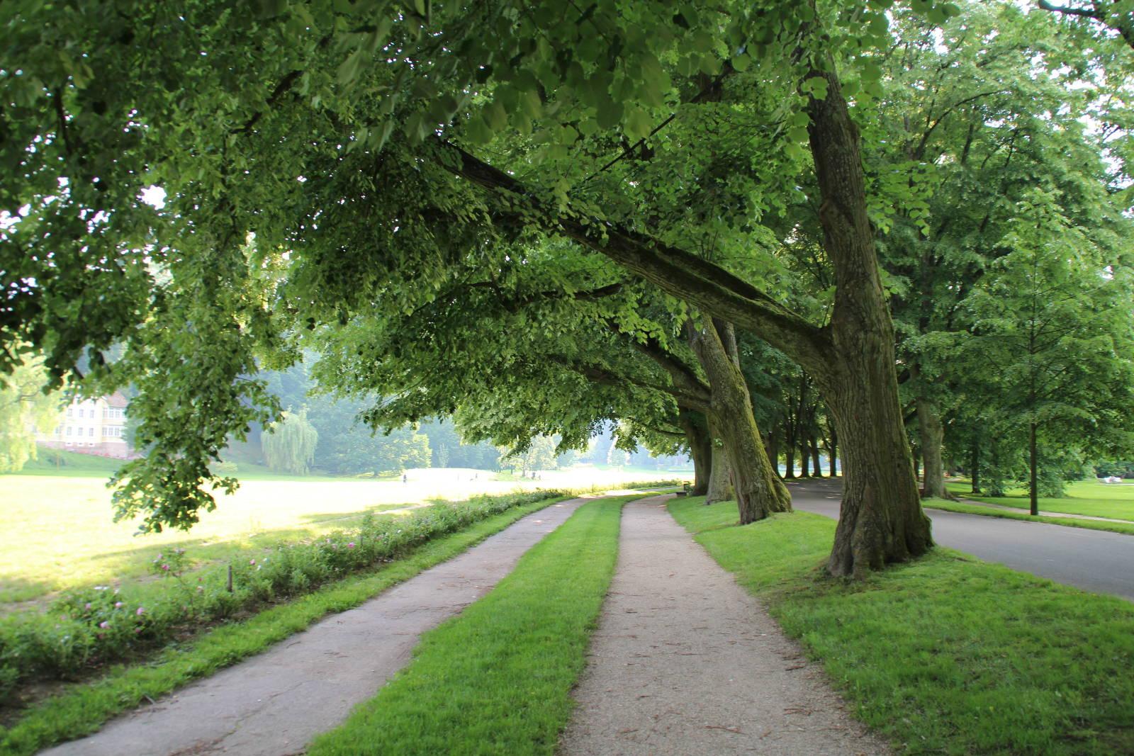 Die Klosterwiese Baden-Baden
