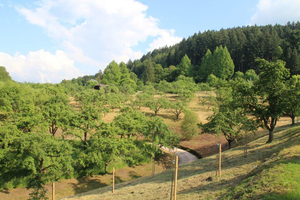 Obstgut Leisberg