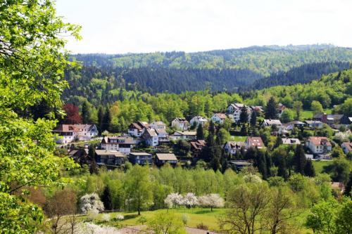 Wanderung Leisberg-Geroldsauer Wasserfall